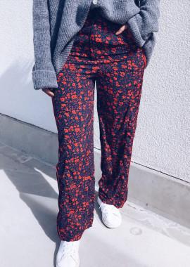 Pants Lemmy